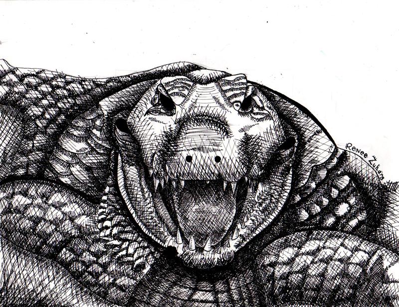Renee Zuhar - Crocodile Tears